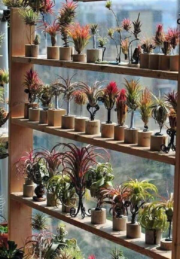 Bamboo crafts for plants