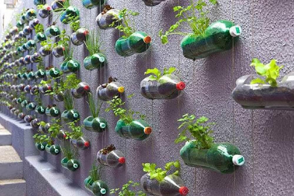 Vegetable garden with pet bottle