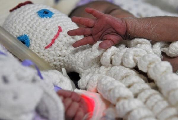 Octopus helps babies to develop