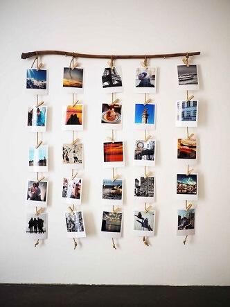 Varal de fotos penduradas em um galho