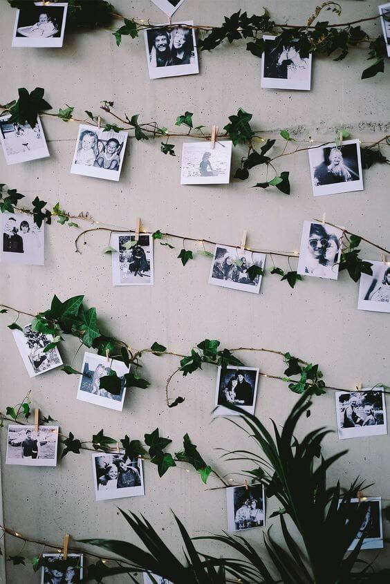 Varal de fotos com plantas na decoração